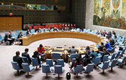 Nga đảm nhận cương vị Chủ tịch Hội đồng Bảo an LHQ tháng 10