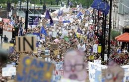 Biểu tình rầm rộ ở Anh phản đối Brexit