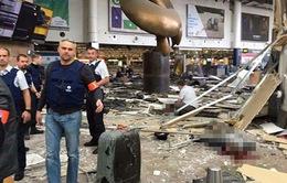 Năm 2016, châu Âu chao đảo bởi các vụ khủng bố