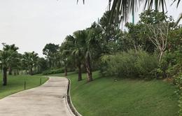 Lúng túng trong xử lý sân golf xây trái quy định