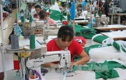 Dự báo sản xuất kinh doanh lạc quan hơn trong những tháng cuối năm