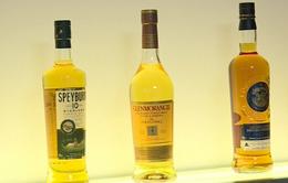 DN sản xuất rượu whisky Scotland hưởng lợi nhờ Brexit