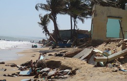 Kiểm tra tình hình sạt lở bờ biển tại Bình Thuận