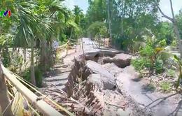 Khô hạn làm sạt lở đường nghiêm trọng ở Cà Mau