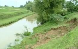 Bắc Giang: Gấp rút khắc phục sạt lở đê do bão số 1