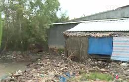 Kiên Giang: Hàng trăm hộ dân vùng sạt lở chờ sự hỗ trợ của chính quyền