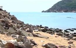 Hơn 9 tỷ đồng khắc phục sạt lở cửa sông Đà Nông, Phú Yên