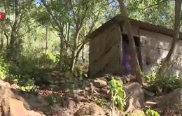 Bình Định: Nguy cơ sạt lở vì xây nhà trái phép trên núi