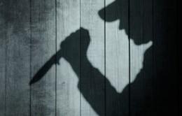 Hà Giang: Bắt giữ nghi can sát hại 3 con ruột