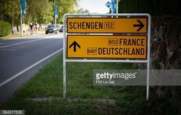 Báo chí toàn cảnh 31/1: Tương lai u ám của Hiệp ước Schengen