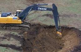 Black Friday: Người dùng không ngừng trả tiền để đào… một hố đất