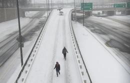 Washington DC như thành phố bỏ hoang trong bão tuyết
