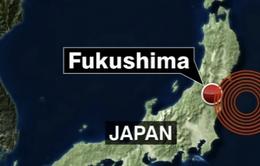 Nhật Bản: Động đất mạnh 7,3 độ Richter, cảnh báo sóng thần