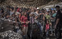 """UNHCR: Châu Âu """"hoàn toàn thất bại"""" trong cuộc khủng hoảng di cư"""