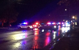 Thêm 2 cảnh sát Mỹ bị phục kích bắn chết