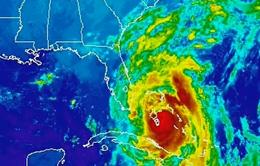 Siêu bão Matthew có thể gây thiệt hại nặng nề cho kinh tế Mỹ