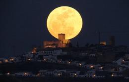Người Việt có cơ hội ngắm Siêu trăng vào 20h52 hôm nay