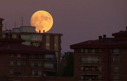 Người dân Thế giới hồi hộp trước giờ đón Siêu Mặt Trăng
