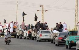 Thủ lĩnh IS tại bán đảo Sinai bị tiêu diệt