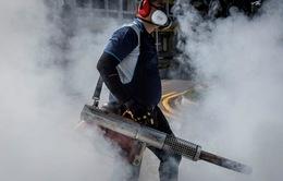 Singapore khuyến cáo về dịch bệnh sốt xuất huyết và virus Zika