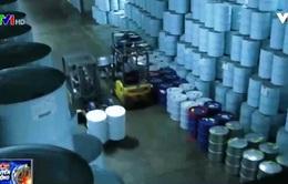 10.000 thùng siro lá phong tại Quebec đã biến mất như thế nào?