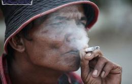 Campuchia: Phát động Chiến dịch không hút thuốc lá tại Siem Reap