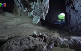 7 đại sứ tại Việt Nam tham gia tour khám phá Sơn Đoòng