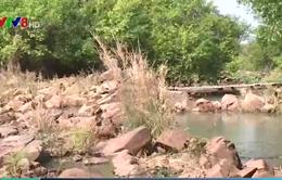 Đăk Lăk đề xuất xây đập trên sông Serepok
