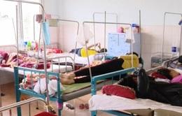 Dịch sốt xuất huyết bùng phát mạnh tại Gia Lai