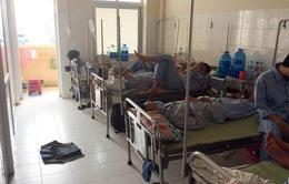 Nguy cơ sốt xuất huyết bùng phát thành dịch tại Cần Thơ