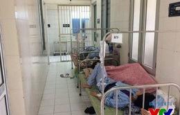 TP. HCM có hơn 8.600 người mắc sốt xuất huyết