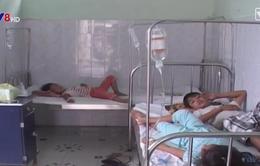 3 tháng đầu năm, số ca sốt xuất huyết ở Khánh Hòa giảm mạnh