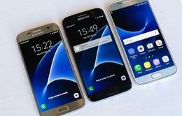 """""""Soi"""" kích cỡ Galaxy S7 và các đối thủ"""
