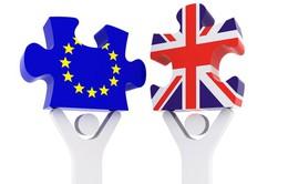 Chia rẽ sâu sắc nội bộ Công đảng sau Brexit tại Anh