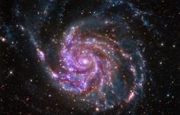 Sự sống có thể tồn tại ở rìa Ngân hà