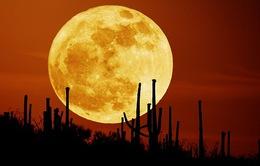 Hôm nay (14/11), xuất hiện siêu trăng lớn nhất trong 7 thập kỷ