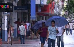 Brazil công bố biện pháp kích thích nền kinh tế