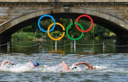 Bơi marathon tại Olympic và những khoảnh khắc ấn tượng