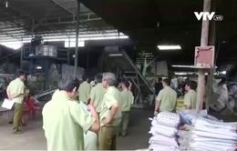 50% cơ sở sản xuất phân bón tại TP.HCM không có giấy phép