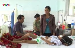 Bệnh sốt xuất huyết gia tăng tại Gia Lai