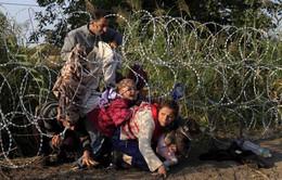 Toàn cảnh thế giới: 5 năm cuộc khủng hoảng Syria (9h30, 20/3, VTV1)