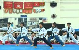 Tín hiệu lạc quan từ các VĐV trẻ ĐT quyền taekwondo Việt Nam