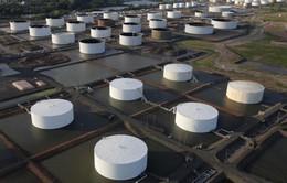 Dự trữ xăng dầu Mỹ giảm, giá dầu bật tăng mạnh