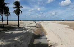 Brazil phát hiện siêu vi khuẩn kháng thuốc tại các bãi biển trước thềm Olympic