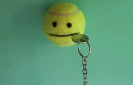 Những ý tưởng tái chế bóng tennis