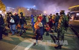 Tổng Giám đốc IMF cảnh báo nguy cơ tan rã của khu vực Schengen