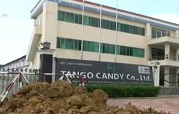 Yêu cầu kiểm tra, xử lý hành vi gây khó doanh nghiệp của KCN Tân Đức