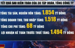 38 tập đoàn, TCT nhà nước làm ăn thua lỗ lớn