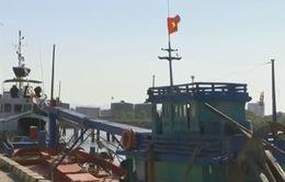 Ngư dân Việt Nam liên tục bị bắt ở nước ngoài