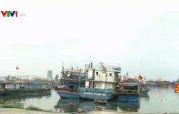Nổ tàu cá tại cảng Bến Đình, thuyền viên bị thương nặng